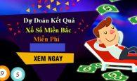 du-doan-ket-qua-xo-so-mien-bac-mien-phi-02-10-2017-1
