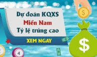 du-doan-xo-so-mien-nam-15-11-2017