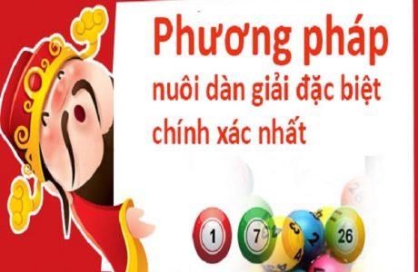 phuong-phap-nuoi-dan-de-hieu-qua